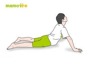 腹筋・背筋のストレッチ