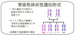 常染色体劣性遺伝