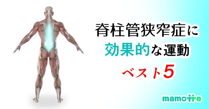 脊柱管狭窄症の運動BEST5