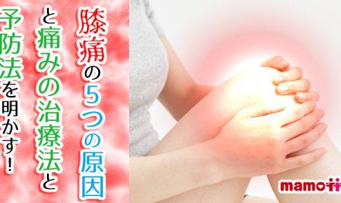 膝の5つの痛み